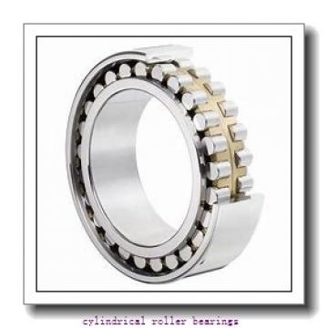 2.559 Inch | 65 Millimeter x 3.937 Inch | 100 Millimeter x 0.709 Inch | 18 Millimeter  CONSOLIDATED BEARING NU-1013 M P/5  Cylindrical Roller Bearings