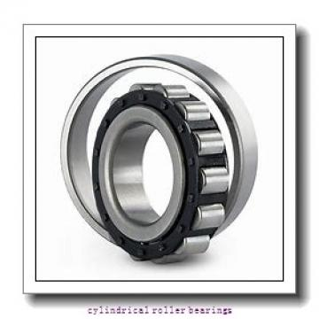 3.15 Inch | 80 Millimeter x 6.693 Inch | 170 Millimeter x 2.688 Inch | 68.275 Millimeter  LINK BELT MA5316TVW542  Cylindrical Roller Bearings