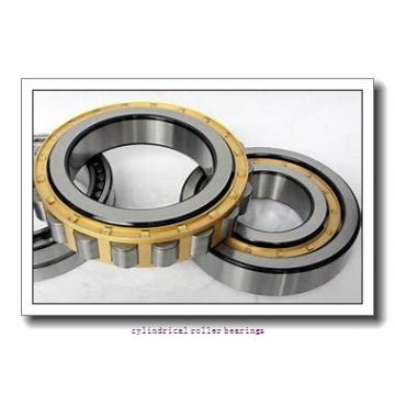 35 mm x 80 mm x 31 mm  FAG NU2307-E-TVP2  Cylindrical Roller Bearings