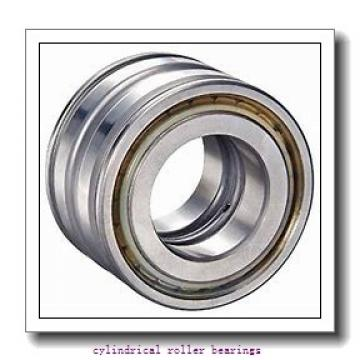 4.724 Inch | 120 Millimeter x 8.465 Inch | 215 Millimeter x 3 Inch | 76.2 Millimeter  LINK BELT MA5224TV  Cylindrical Roller Bearings