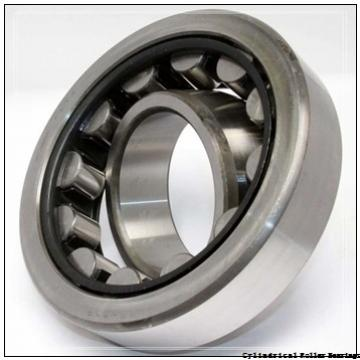 4.221 Inch | 107.218 Millimeter x 6.299 Inch | 160 Millimeter x 1.181 Inch | 30 Millimeter  LINK BELT M1218EHXW190C5  Cylindrical Roller Bearings