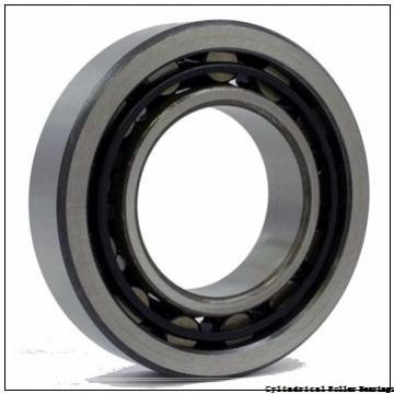 1.969 Inch | 50 Millimeter x 2.38 Inch | 60.46 Millimeter x 0.787 Inch | 20 Millimeter  LINK BELT MS1210  Cylindrical Roller Bearings