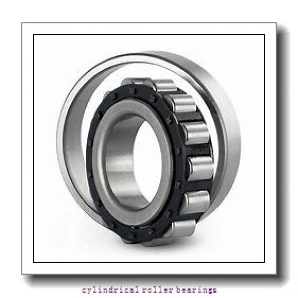 120 mm x 215 mm x 58 mm  SKF NU 2224 ECML  Cylindrical Roller Bearings #3 image