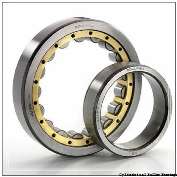 120 mm x 215 mm x 58 mm  SKF NU 2224 ECML  Cylindrical Roller Bearings #1 image